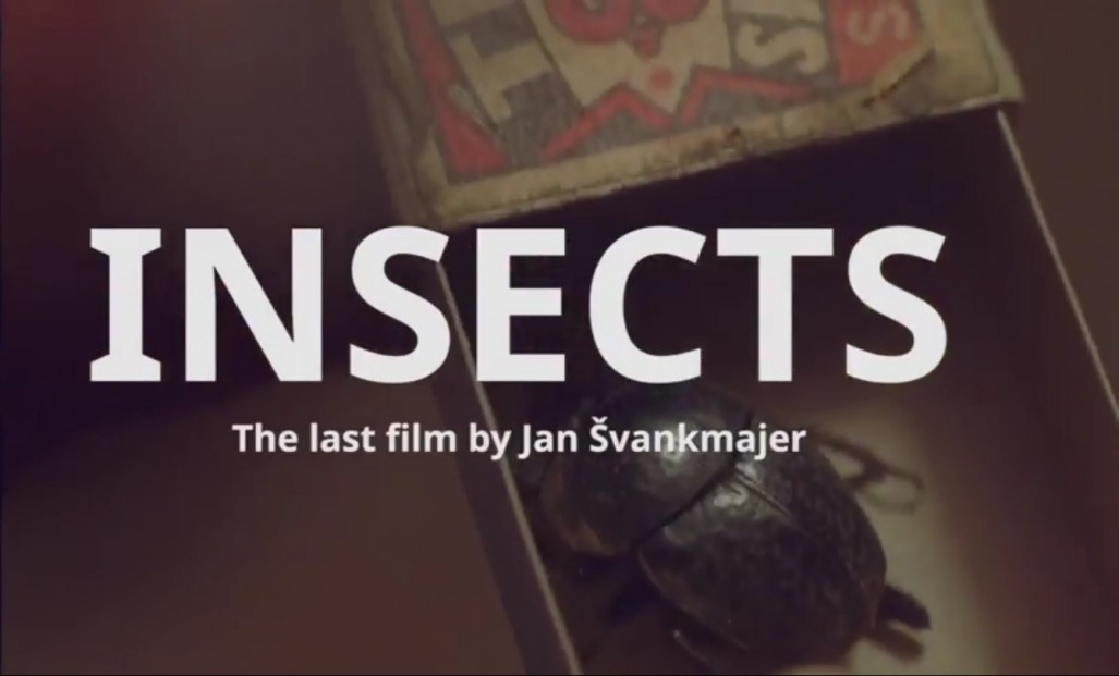 Insects_pic.jpg