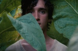 Happy-as-Lazzaro-4.jpg