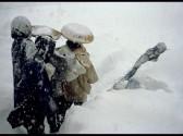 Under-Snow-1.jpg